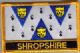 Shropshire Embroidered Flag Patch, style 09.